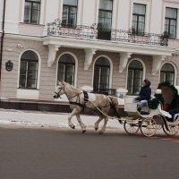 Одна лошадиная сила. :: sav-al-v Савченко