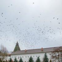 Небо над Монастырём... :: Ирина Шарапова