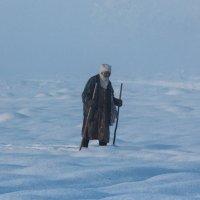 Лыжная пробежка. :: Георгий