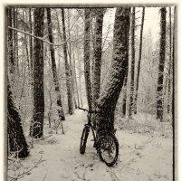 Почти зима :: Валерьян