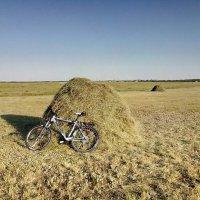 Я буду долго гнать велосипед... :: Хлопонин Андрей Хлопонин Андрей