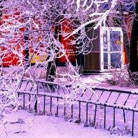 Экспрессия Зимы :: Екатерина Торганская