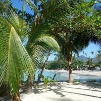 Пляж. :: Зоя Чария