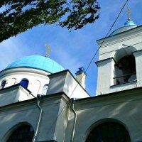 Кафедральный собор Рождества пресвятой богородицы :: Елена Вишневская