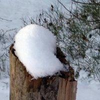 Тает снег в январе :: Galina Solovova