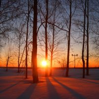 Легли причудливые тени... :: владимир тимошенко