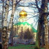 Зима 2020 в Ал.парке ЦС - 3 :: Сергей