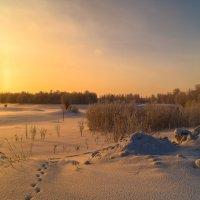 За городом зима :: Оксана Галлямова