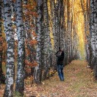 Осень. :: Светлана Крюкова