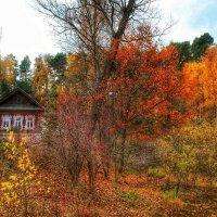 Осень :: Анастасия Самигуллина