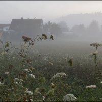 Утро туманное. :: Валерий Готлиб