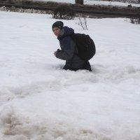 В сугробе. :: Ильсияр Шакирова