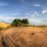 Следы на песке :: Cергей Кочнев