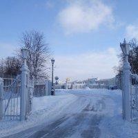 зима в Царском Селе :: Елена