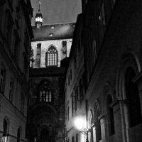 в ночной Праге :: Елена