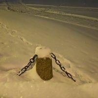 в снежном Петербурге :: Елена