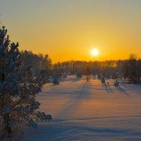 Закатный свет. :: Валерий Медведев