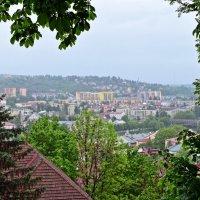 Вид на город Пшемысль с Замковой горы :: Татьяна Ларионова