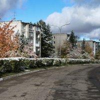 Первый снег2 :: Николай