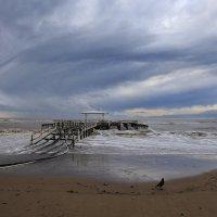 Небо, море и ворона :: галина северинова