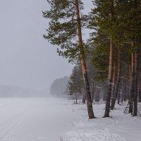 Зимняя туча :: Сергей l