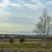 январский пейзаж средней полосы :: владимир