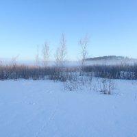 Утро на озере :: Денис Бочкарёв