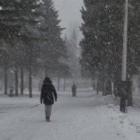 Внезапный снегопад :: Натали Зимина