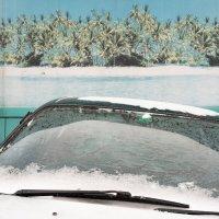 Пальмы, песок, снег и дворники :: Валерий Михмель