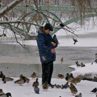 Человек и птицы :: Ольга Довженко