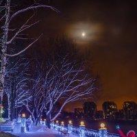 Морозный вечер :: Алёна Прель