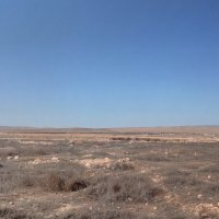 Сирия :: Юрий Арасланов