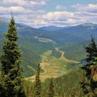 Долина речки Берёзовой :: Сергей Чиняев
