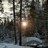 Первый день зимы :: Светлана Петошина