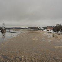 река Волхов в грязных оттенках... :: Олег Фролов