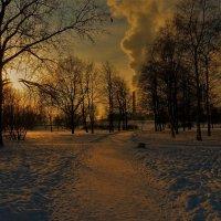 Навстречу зимнему закату или когда  зима была настоящей... :: Sergey Gordoff