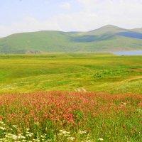 Армения :: Susanna Sarkisian