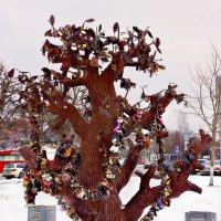 Гейроп дерево :: Екатерина Забелина