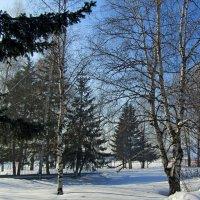 Морозный день :: Дмитрий (Горыныч) Симагин