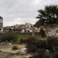 Хомс :: Юрий Арасланов