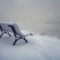 Зимнее безмолвие. :: Denis Makarenko