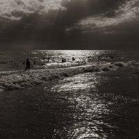 Солнечные ванны :: Светлана Карнаух
