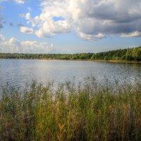 Копанское озеро :: Cергей Кочнев