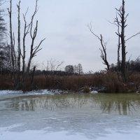 Каринское озеро :: Денис Бочкарёв