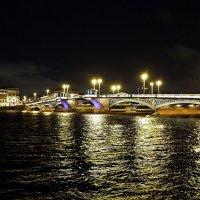 Благовещенский мост (Санкт-Петербург) :: Ольга И