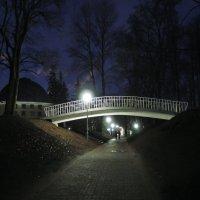 Вечером в парке. :: Александр Сапунов