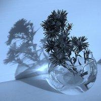 Цветы с тенью :: Зуев Геннадий