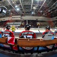 На хоккее... :: Михаил Петрик