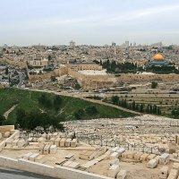 Иерусалим. Вид на Старый город и кладбище с Элеонской горы. :: Зуев Геннадий