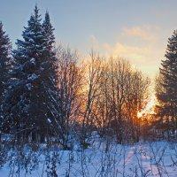 Зимний вечер :: val-isaew2010 Валерий Исаев